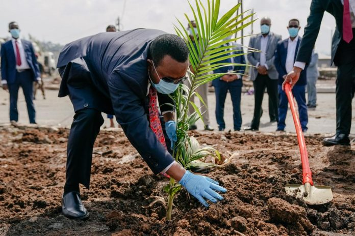 Abiy Ahmed plating a tree as Green Legacy Initiative